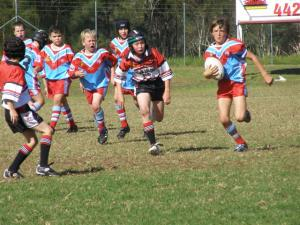 Milton Ulladulla Bulldogs Website Software