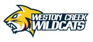 WILDCATS - Logo