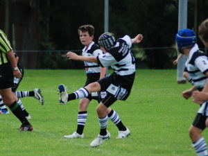 Photos 24th April Berry Shoalhaven Heads Magpies Sportstg