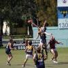Mitchell taps - Reserves Final v Noosa