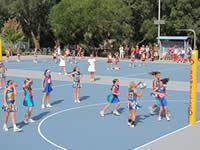 Netball Tournament