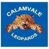 Calamvale JAFC