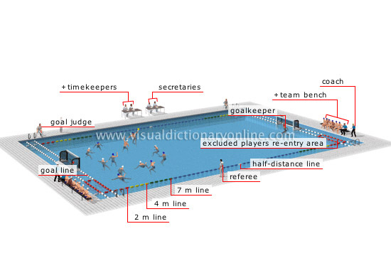 1st june rules of water polo training at msac water for Dimension piscine olympique