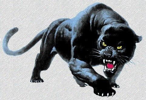 SABC Panther