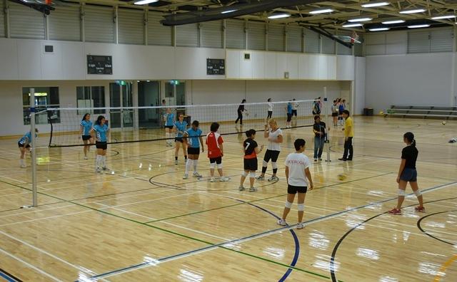volleyball north sydney - photo#13
