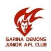 Sarina Demons
