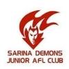 Sarina Demons
