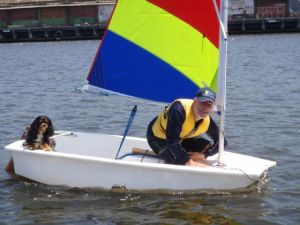 Magnum sailing the opti
