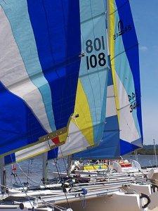 Nacra Sail Colour