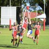 The Coffs Swans were a step ahead of Grafton on their way to a solid 51-point victory. Photo: Debrah Novak/Daily Examiner