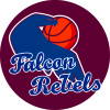 Falcon Rebels