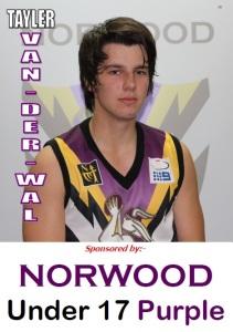 Shane norwood casino