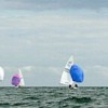Fleet at DBYC 2015 states with spinakers