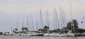 21 Masts at QCYC