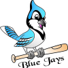 Blue Jays Softball