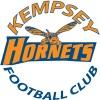 Kempsey Hornets Football Club